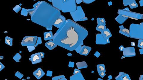 Twitter Animation