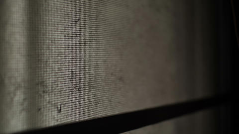 Old mosquito wire screen in haunted house Footage