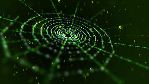 Green Spider Web in Black Cyberspace Animation
