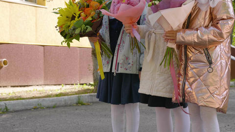 Cute schoolgirls with bouquet flowers before first lesson begins. Back to school Footage