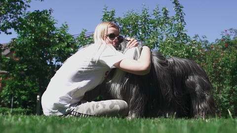 Woman caress her dog sitting on grass Stock Video Footage