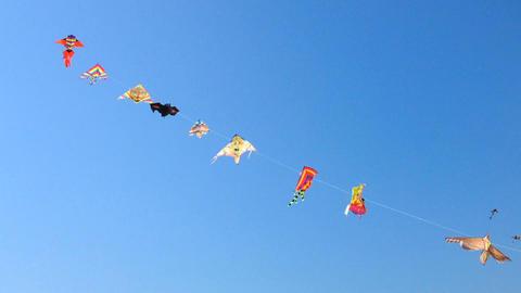 Kites flying against blue sky Footage