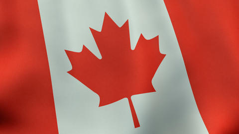 Loopable waving Canadian flag animation Animation