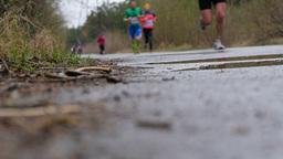 athletes runners marathon run in forest Footage