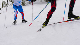 Men skiers marathon runners climb mountain classic style Footage