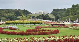 Summer Day Incredible Flower Garden Schoenbrunn Palace at Vienna Austria 4K Footage