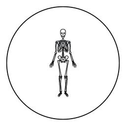 Human skeleton icon black color in round circle ベクター