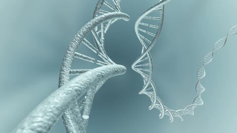 Animated travel of genetic DNA code strands. 3D rendering 4K, Stock Animation