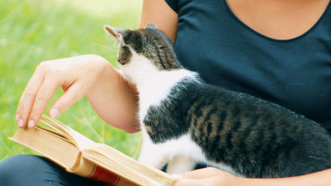 girl detail reads a book with a kitten playing with pages of the book GIF
