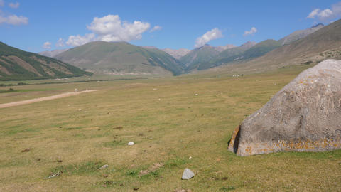 Summer landscape with green meadow and mountains, panning to big stone Footage