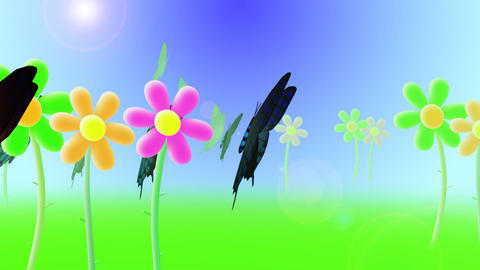 Butterflies flying over field with flowers Animation
