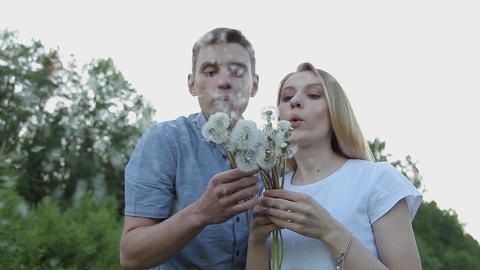 The guy and the girl blow on dandelions Footage