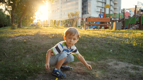 4k footage of little toddler boy playing in park and digging earth with toy Footage