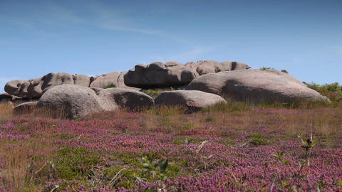 Pink granite rocks at Ploumanach. Bretagne France Live Action