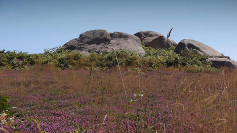 Granite rocks at Ploumanach. Bretagne France Footage