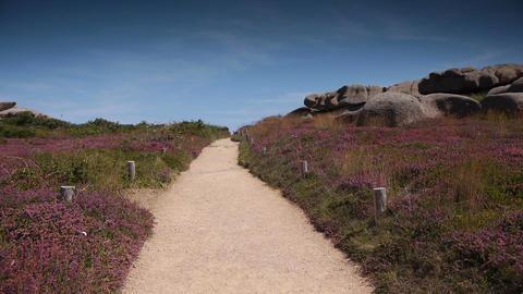 Ploumanach granite coastline. Bretagne France Footage
