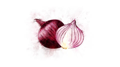 Animation of the Red Onion watercolor drawing Animation