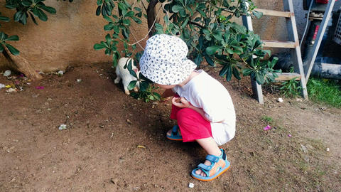 4k video of adorable 2 years old toddler boy feeding rabbit with leaves Footage