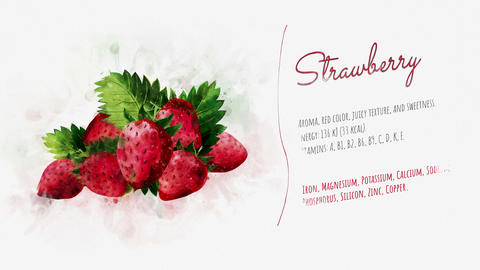 Slide for presentation of Strawberry Animation