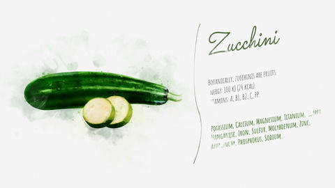 A beautifully animated card with information about Zucchini Animation