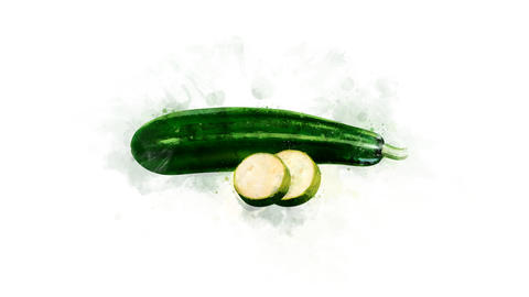 The Zucchini illustration appearance Animation