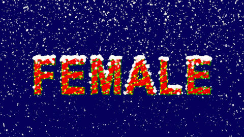 New Year text text FEMALE. Snow falls. Christmas mood, looped video. Alpha Animation