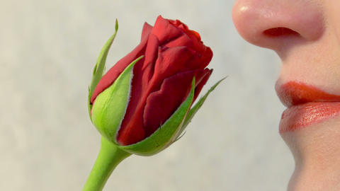 Woman smelling a red rose 4K Footage
