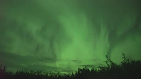 aurora borealis (northern lights) in Whitehorse, Canada Live Action