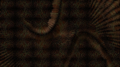 Background Fur Product Animation