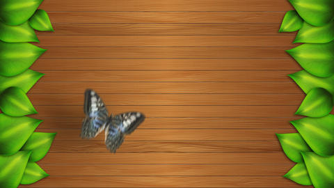 Butterfly Animation Video Motion Graphics Animation Background Loop HD Animation