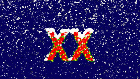New Year text Roman numerals XX. Snow falls. Christmas mood, looped video. Alpha Animation