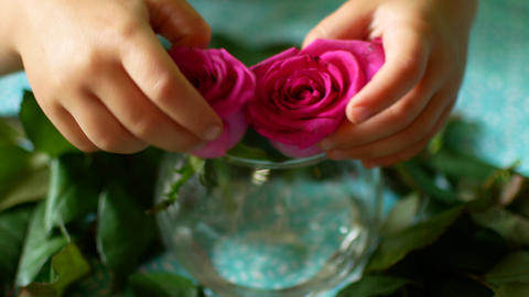 Little baby hands taking two flowers Stock Video Footage