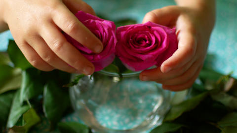 Little baby hands taking two flowers Footage
