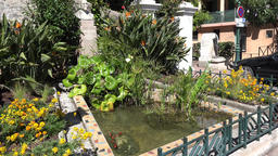 France Cote d'Azur Villefranche sur Mer water basin with gold fishes and plants GIF