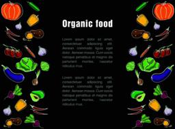 Flyer for organic food Vector