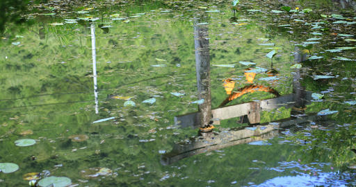 Reflecting shrine gateway on the surface of the water Footage