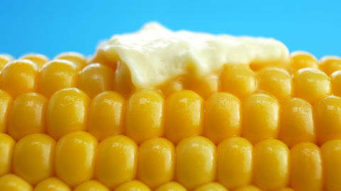 Tasty fresh piece of butter melting on ripe yellow fresh corn on cobs Footage