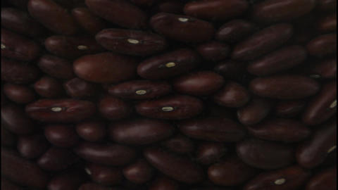 Kidney beans falling Stock Video Footage