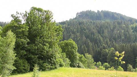 Mountains Beauty Scene 03 Stock Video Footage