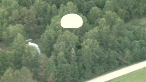 Parachutists in the air Stock Video Footage