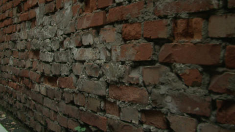 The old brick wall Stock Video Footage