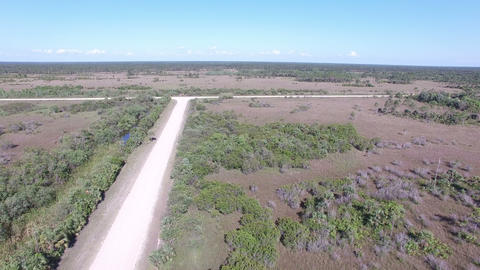 06 Big Cypress National UP 4K Stock Video Footage