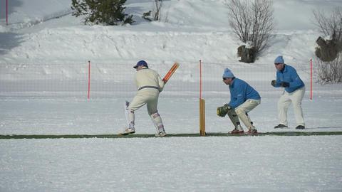 cricket on ice batting slow motion Footage