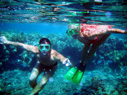 a couple of divers under water among of corals Photo