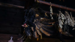 Still Life: Rooster Hanging Upside Down Footage