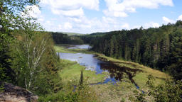 Wetlands Panorama in Southern Ontario Footage