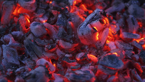 Smouldering coals close up. Burning coals in bonfire at night. Decaying charcoal Live Action
