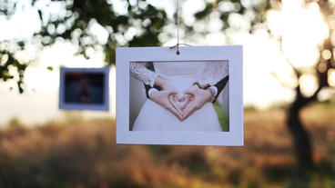Wedding - Photo Gallery After Effects Template