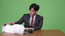 Young handsome Asian businessman with Persian cat against green background Footage