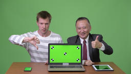 Mature Japanese businessman and young Scandinavian businessman working together Footage